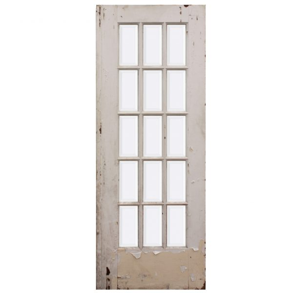 "Salvaged 30"" Divided Light Door, Beveled Glass-0"
